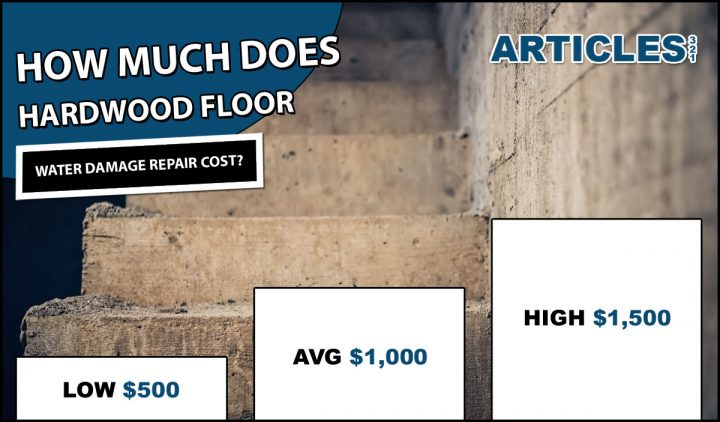 How Much Does Basement Water Damage Repair Cost?