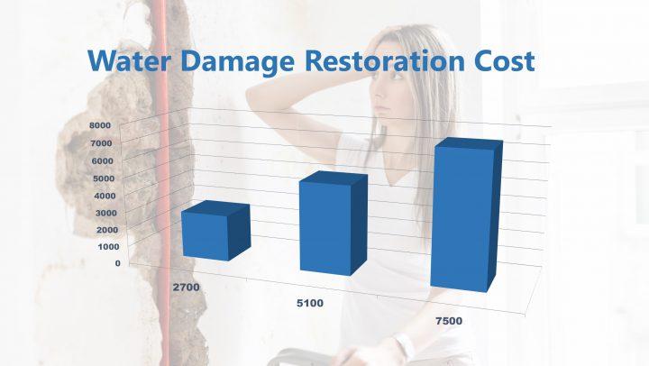 Water Damage Restoration Cost