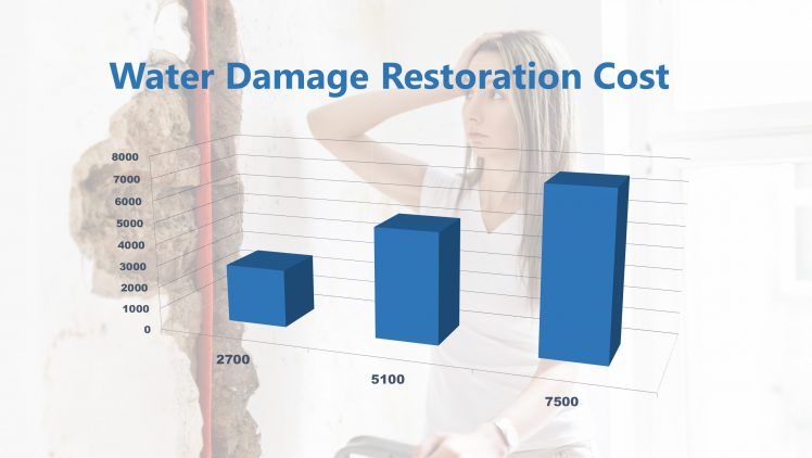 Water Damage Restoration Cost Tempe AZ